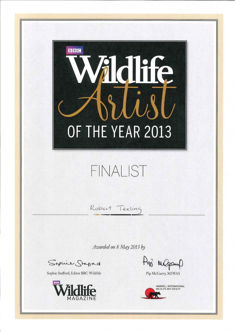 BBC International Wildlife Artist of the Year 2013